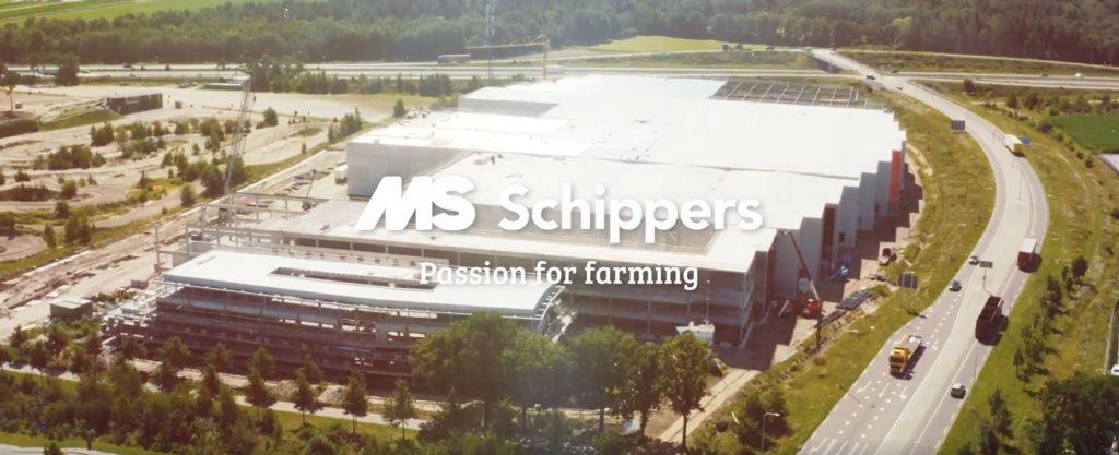 MS Schippers te Hapert